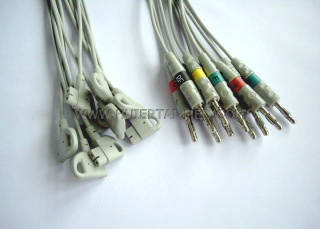 Philips 10 leads set