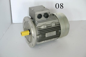 three-phase electric motor - Y2