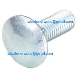 Stainless Steel Carriage Bolt - DIN 603