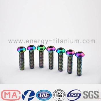 Gr5 titanium alloy Dome Head bolt - TB04