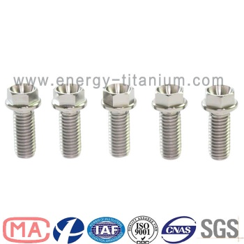 Gr5 titanium alloy Flanged Hex Head Bolt - TB05