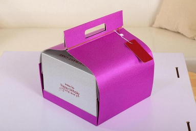 Portable Cake Packaging Boxes - SPB-002