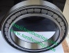SL cylindrical roller bearing SL04 140 P SL04140-PP