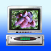 TFT LCD Monitor / color TV - NP6000TV